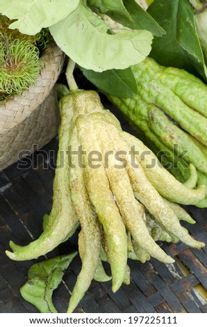 Fingered Citron or Buddha Hands.  - stock photo