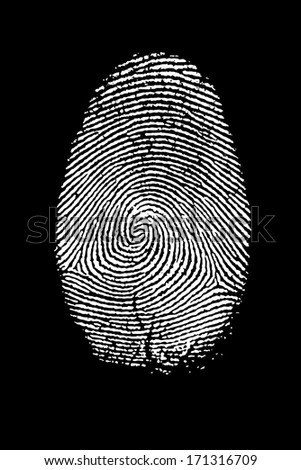 Fingerprint Isolated on Black High Resolution Image.