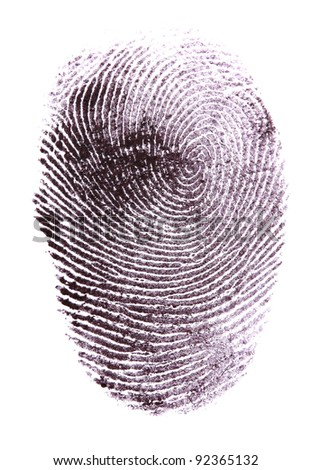 Fingerprint isolated on white - stock photo