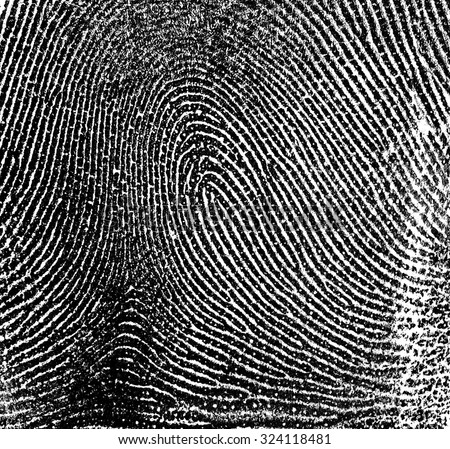 Fingerprint on white paper - stock photo