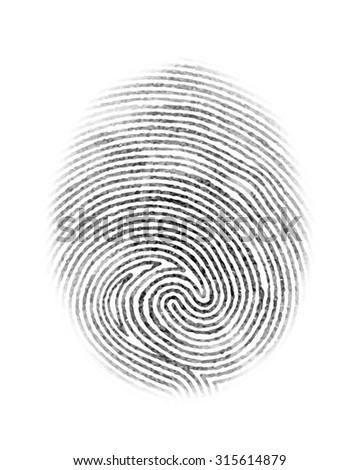 Fingerprint  personal identity and insignia symbol isolated on white background  illustration - stock photo