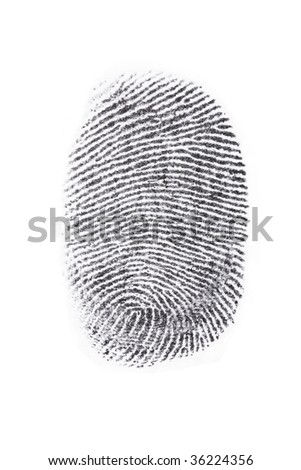 Fingerprint print output isolated in a white background.