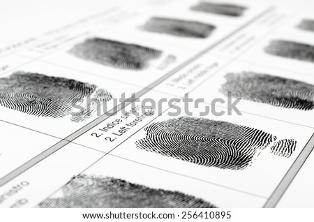 Fingerprints - stock photo