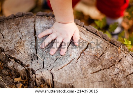 Fingers of baby in blue - stock photo
