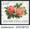 FINLAND - CIRCA 1997:  stamp printed by Finland, shows rose flowers, circa 1997 - stock photo