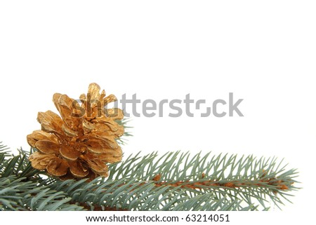 fir branch and cone laying - stock photo