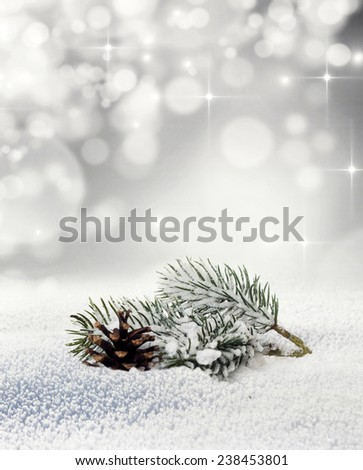 Fir branch in snow on bokeh background
