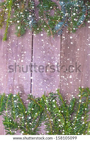 Fir branches with snow - stock photo
