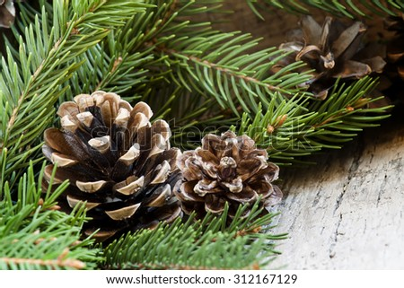 Fir cones and branches, Christmas and New Year's background, selective focus
