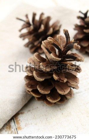 fir cones on table top