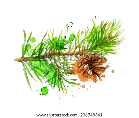 Fir tree branch and pine cone in art design. Watercolor
