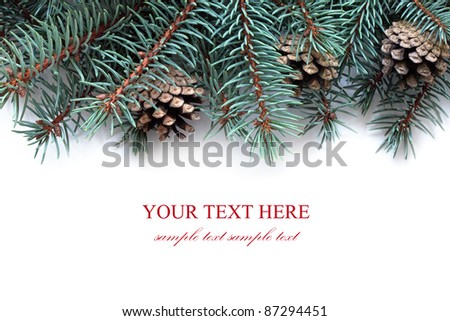 Fir tree branches with cones, isolated on the white background.