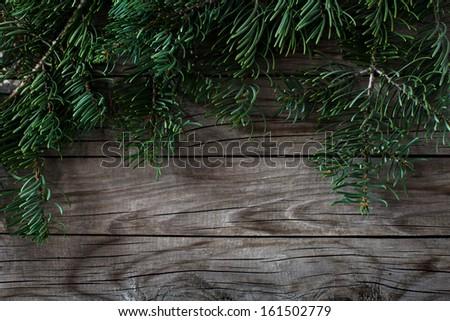 fir tree christmas background - stock photo