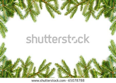 Fir tree frame - stock photo