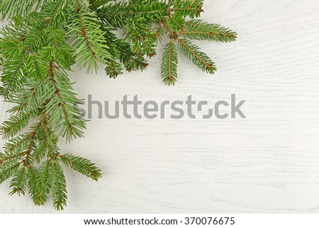 Fir tree twigs isolated on white - stock photo