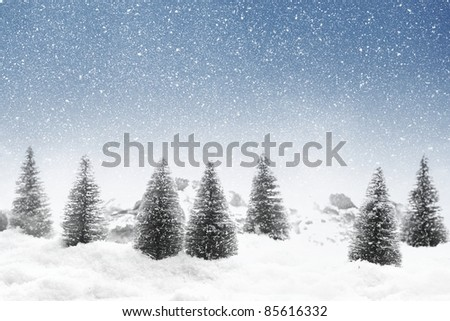 Fir trees with snowfall - stock photo