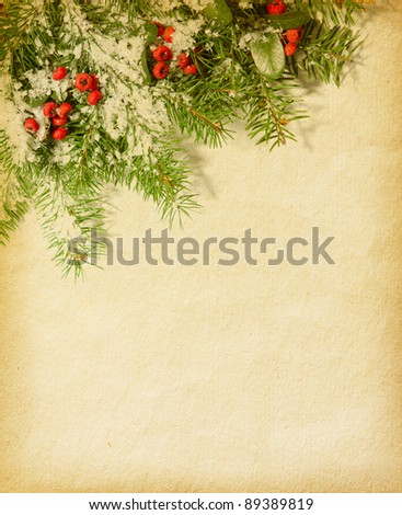 fir twig  on old paper. red berries - Pyracantha - stock photo