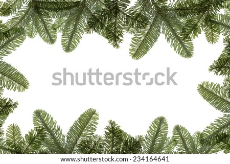 Fir twigs arranged with text space  - stock photo
