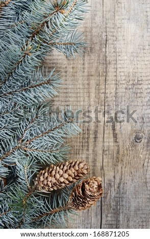 Fir with cones on wooden background. Top view, copy space
