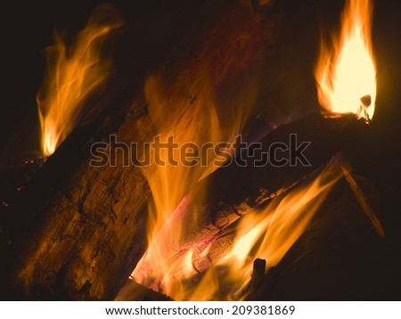 fire and burning firewood at the campfire - stock photo