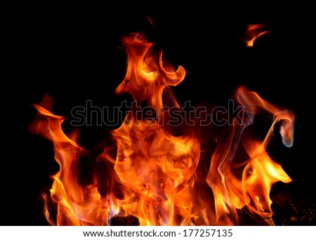 Fire and flame on black background - stock photo