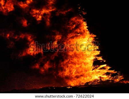 Fire and flames in a forest on a black