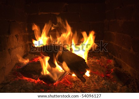 Fire and tree - stock photo