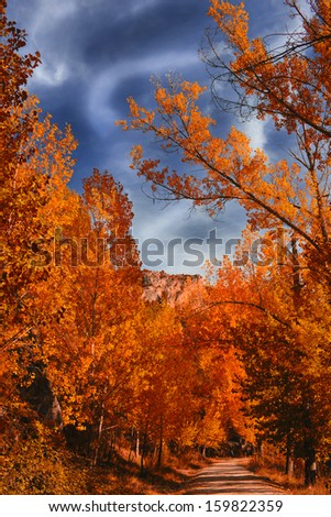 fire autumn - stock photo