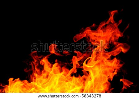 Fire background with bright vivid flame on black background - stock photo