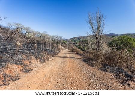 Fire Burn Break Landscape Fire burn black gap dirt road through the dry vegetation up over the distance landscape - stock photo