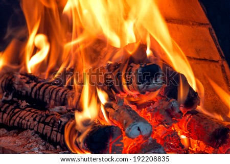 fire  burning a wood - stock photo