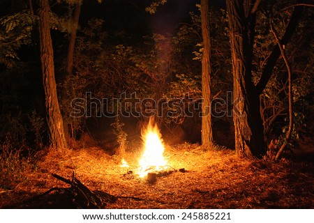 Fire burning at night in a forest glade - stock photo