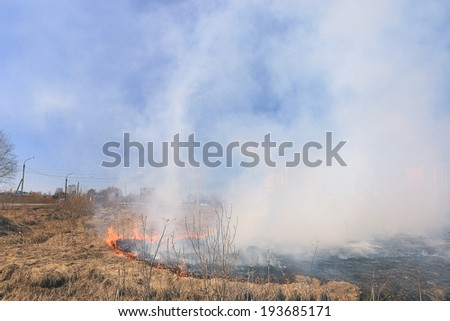 fire burning dry grass - stock photo