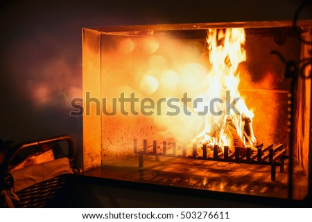 Fire burns in a fireplace , radiant heat