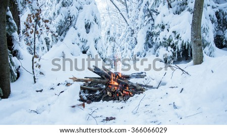 Fire burns in the snow in the woods, on a background of snow covered trees - stock photo