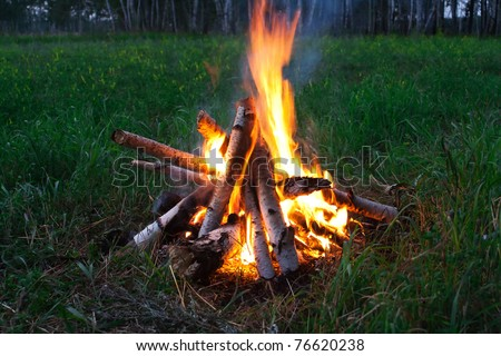 Fire camp in night wood - stock photo