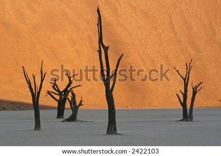 Fire Dune - stock photo