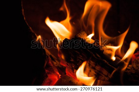 fire flame with wood - stock photo