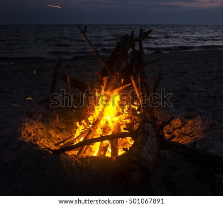 Fire flames background. Bonfire on the sea beach at night.