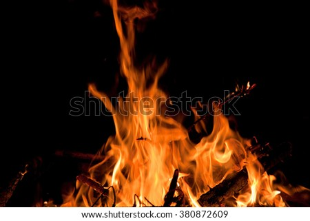 Fire flames in the night - stock photo