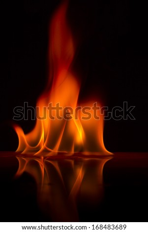 Fire flames on a  background - stock photo