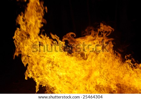 Fire flames raising in a dark background - stock photo