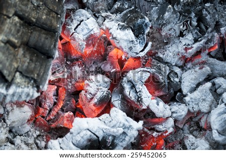 Fire from burning firewood with ashes and flames. - stock photo