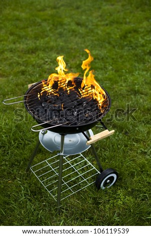 Fire, Hot grilling - stock photo