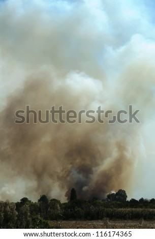 Fire in a field and thick clouds of smoke in the sky.