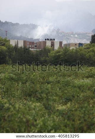 fire in between forest and the constructions - stock photo