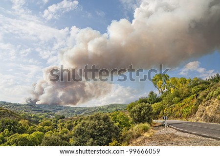 Fire in Los Ancares (nature reserve of the biosphere), Leon, Spain - stock photo