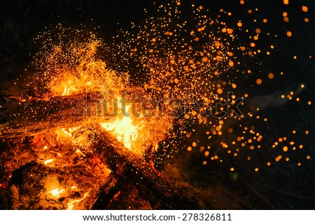 fire in nature . bokeh from the fire . blurred backgrounds . Space views. - stock photo