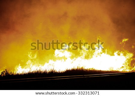 Fire in wild in night time and try to fight by firefighter, Danger area which impact with nature and wild animal. - stock photo