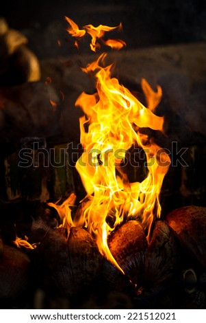 Fire is burning in coconut wood. - stock photo